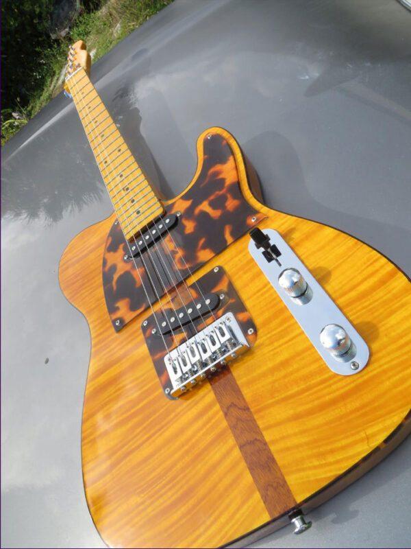 Madcat guitar