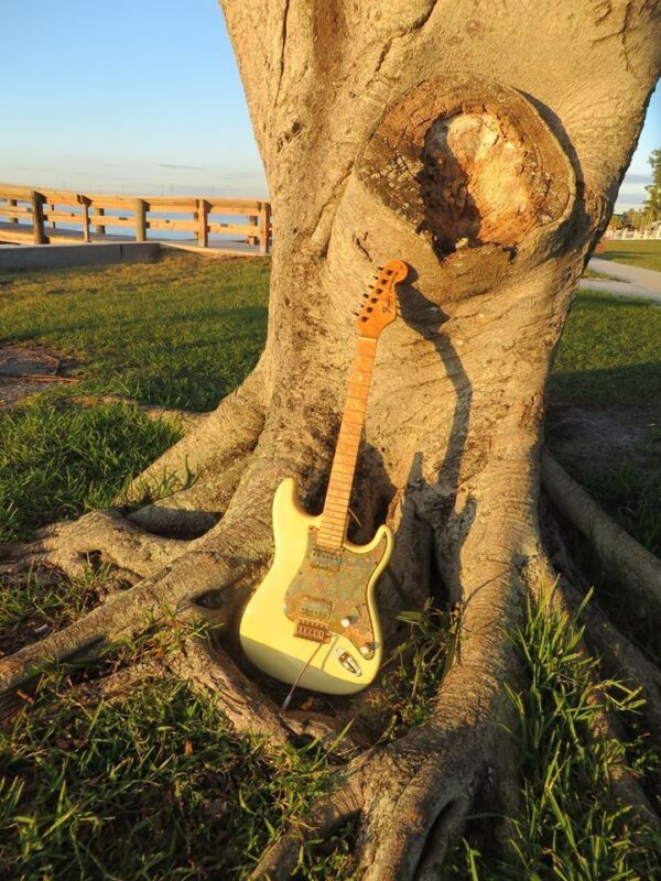 Stratocaster leaning against a tree
